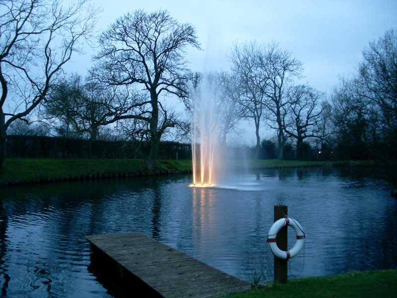 Water Garden Pond Specialist Maintenance Services Imas